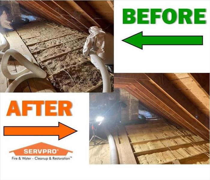 Before & After photo with an attic having cellulose insulation removed with a large vacuum.
