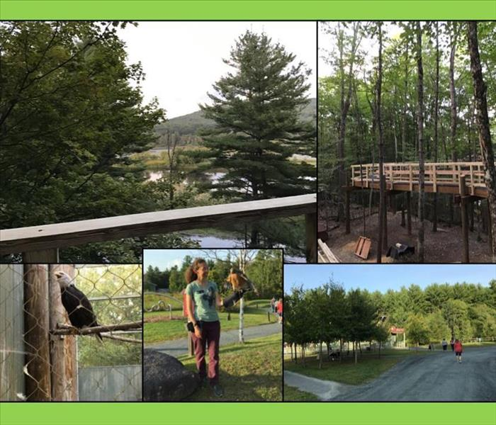 Collage of pictures of birds, staff , guests and Forest Canopy Walk at the Vermont Institute of Natural Science